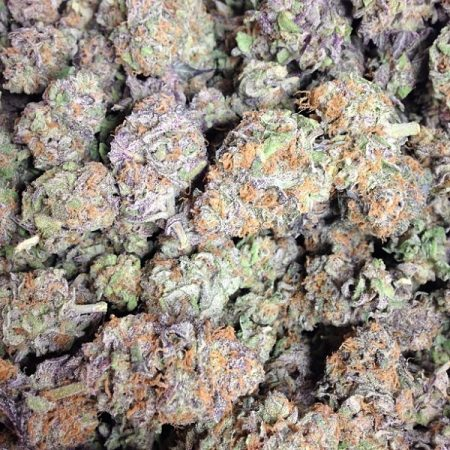 granddaddy-purple-marijuana-strain-3