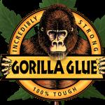 gorilla glue autoflower