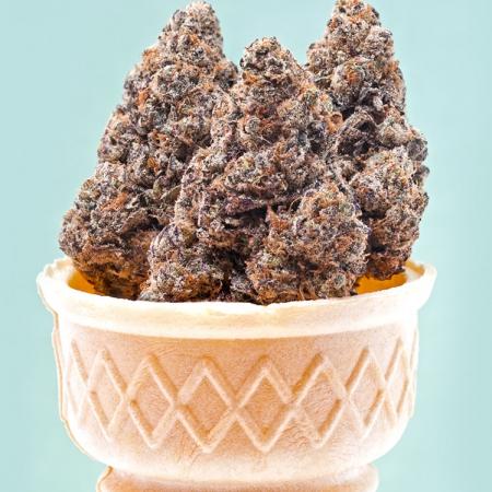 gelato autoflower